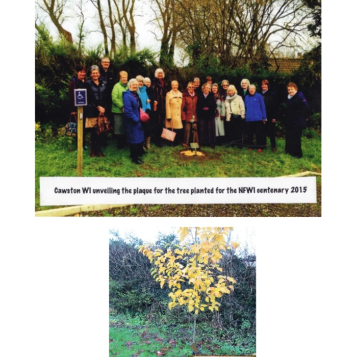 WI Centenary tree planting and Visit to Coltishall.pdf