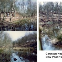 Cawston Heath Dew Pond 1986.jpg