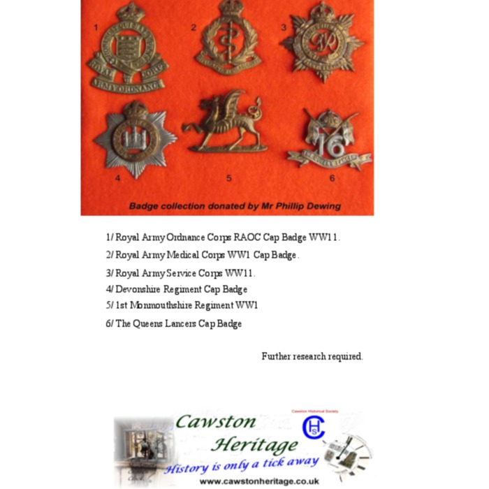 Forces Badge Collection.pdf
