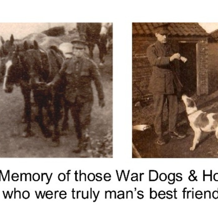 War Horses and Dogs Lview.jpg