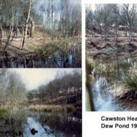 Cawston Heath Dew Pond 1986.jpg